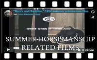 sumvideos - horse icon